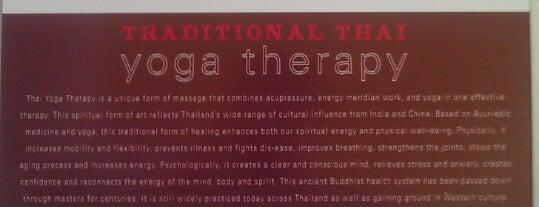 LIFE yoga studio is one of NOLA.