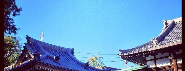 玄國寺 is one of 西郷どんゆかりのスポット.