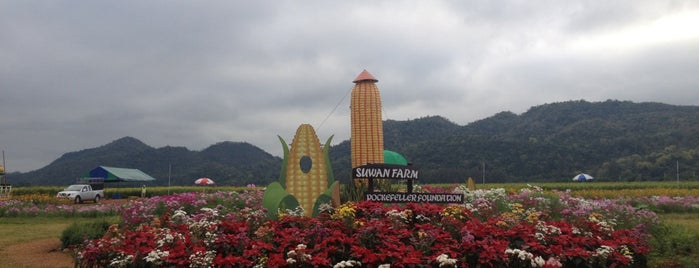 Suwan Farm is one of Posti che sono piaciuti a Chaimongkol.