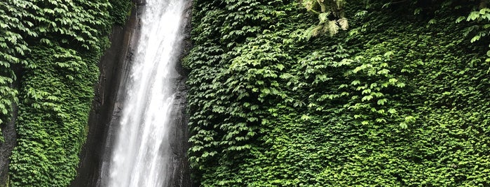 Munduk Waterfall is one of Bali.