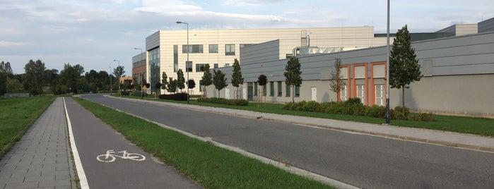 Kampus uniwersytetu Jagiellońskiego is one of BURAK'ın Beğendiği Mekanlar.