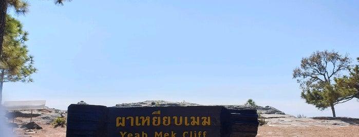 ผาเหยียบเมฆ is one of เลย, หนองบัวลำภู, อุดร, หนองคาย.