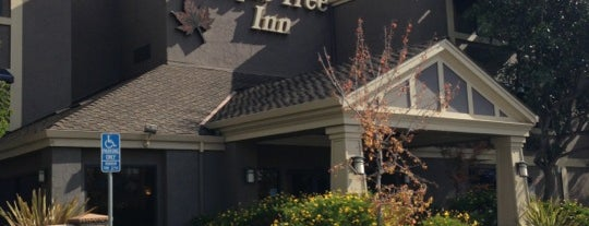Maple Tree Inn is one of When you travel.....