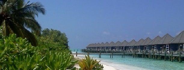 Kuredu Island Resort is one of Phat's Liked Places.