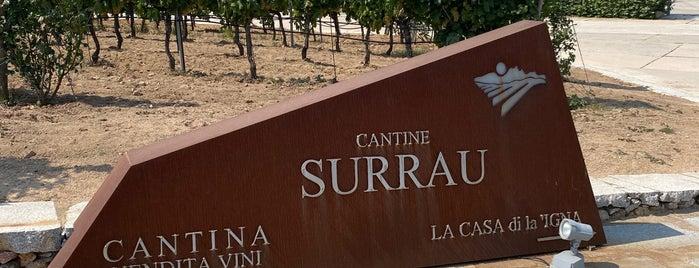 Vigne Surrau is one of Sardinia.