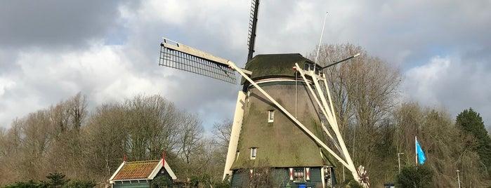 Riekermolen is one of Amsterdam.