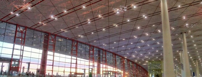 Beijing Capital International Airport (PEK) is one of สถานที่ที่ Shanshan ถูกใจ.