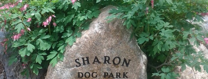 Sharon Dog Park is one of Places to Bring Mona.