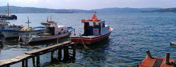 Paşabahçe Sahili is one of Locais curtidos por Mesrure.