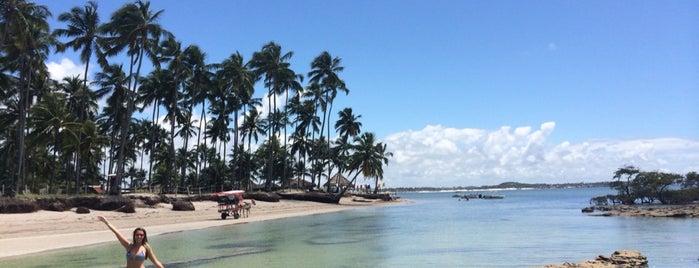 Praia dos Carneiros is one of Tempat yang Disukai Joao Ricardo.
