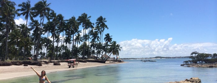 Praia dos Carneiros is one of Joao Ricardo'nun Beğendiği Mekanlar.