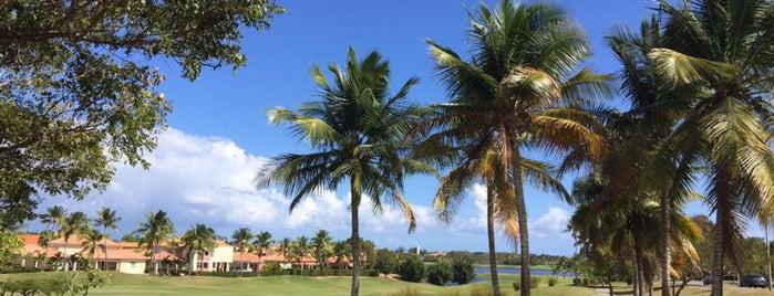 Palmas Del Mar Country Club is one of สถานที่ที่ Cristina ถูกใจ.