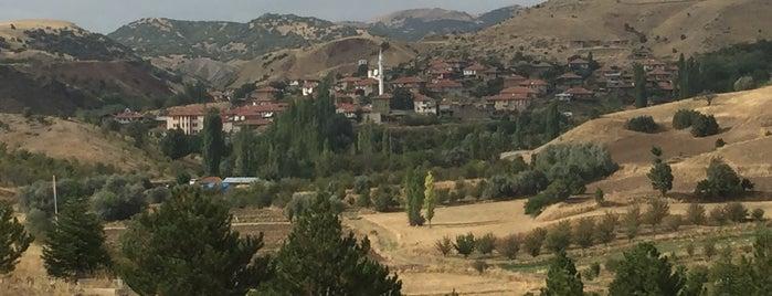 Kavaklı is one of Çubuk.