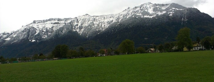 Des Alpes is one of Interlaken.