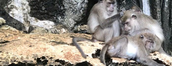 Monkey Beach is one of Thaïlande.