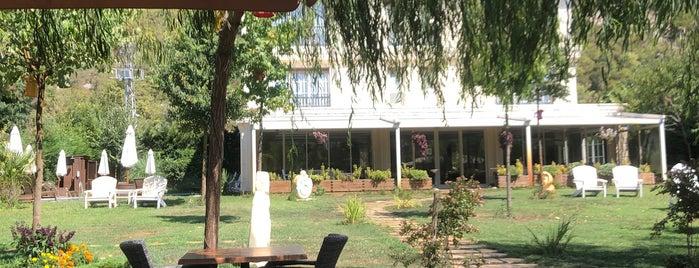 The Escape Hotel is one of Orte, die Ela gefallen.