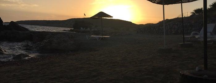 Güneşköy Cafe & Plaj is one of Beach&haven.