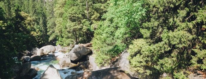 Yosemite National Park is one of สถานที่ที่ Nicole ถูกใจ.