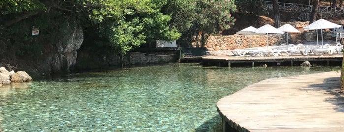 Çınar Plajı is one of Orte, die Tuğba gefallen.