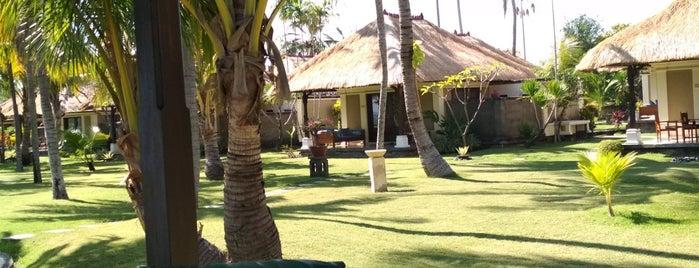 Puri Bagus Lovina Villa Resort is one of Travels in Asia.