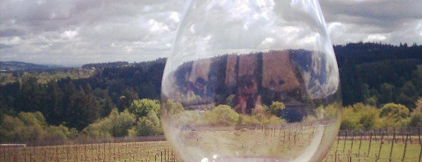Raptor Ridge Winery is one of Oregon Wining.