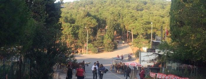 Lunapark Meydanı is one of Adalar.