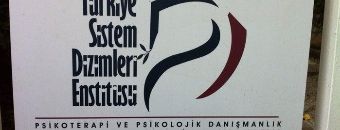 Turkiye Sistem Dizimleri Enstitusu is one of Posti salvati di Aisha.