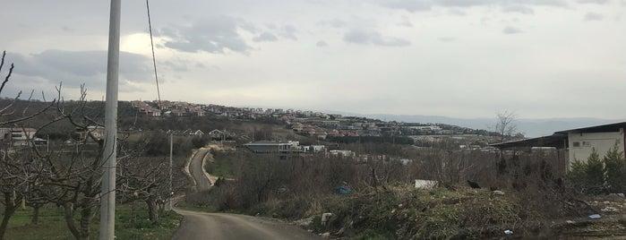 Mürsel Köy Meydan is one of Erkan 님이 좋아한 장소.