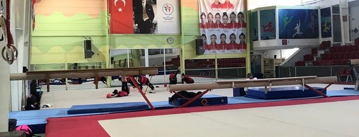 Cemal Alpman Cimnastik Spor Salonu is one of สถานที่ที่ Mug ถูกใจ.