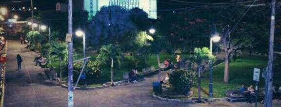 Parque de Perez Zeledón is one of Tempat yang Disukai Junni.