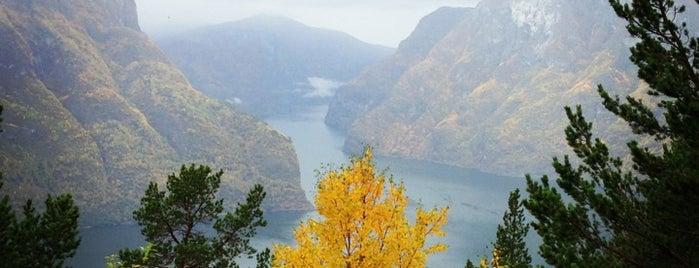 Aurlandsfjord is one of Norway :).