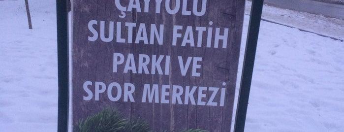 Çayyolu Sultan Fatih Parkı ve Spor Merkezi is one of Park.
