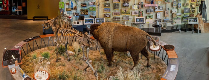 Fort Collins Museum of Discovery is one of Colorado.