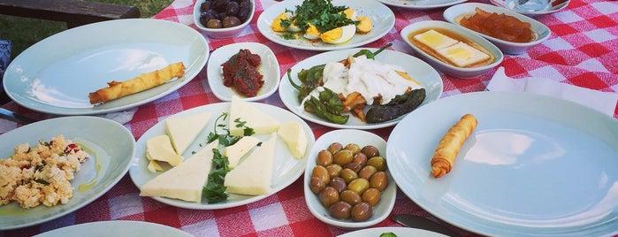 Yeşil Ev Butik Kır Evi & Kahvaltı Bahçesi is one of Lieux qui ont plu à Figen.