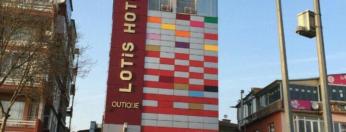 lotis boutique otel spa is one of Lieux qui ont plu à Sinan.