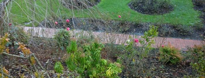 International Rose Test Garden is one of Portlandia.