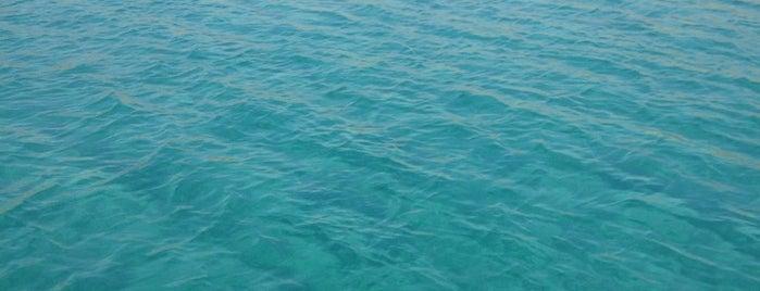 Lovers Bay is one of สถานที่ที่ Arda ถูกใจ.