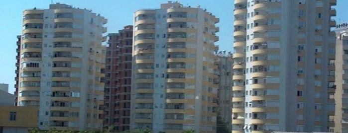 Burcu Sitesi is one of Kenan : понравившиеся места.