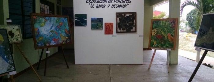 Casa de la Cultura de Puerto Escondido is one of Visitar.