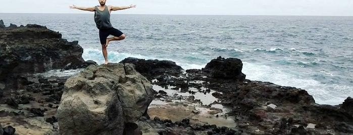 Nakalele Blowhole is one of Maui's Little Gems.