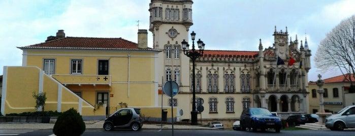 Câmara Municipal de Sintra is one of Orte, die Paul gefallen.