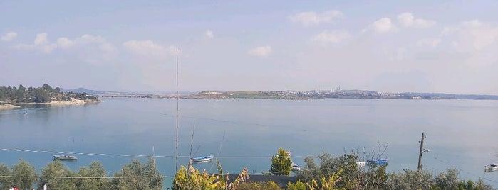 Asmalı Köy Kahvaltısı is one of Adana Lezzet.