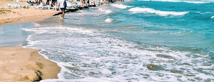 Long Beach is one of Lugares favoritos de Hanna.