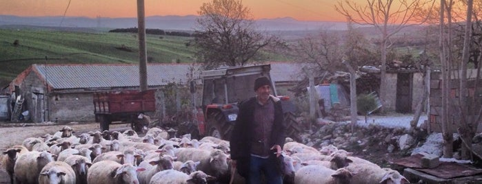 güneyli tatil köyü saroz is one of Posti che sono piaciuti a 💫 UGUR ERKMEN.
