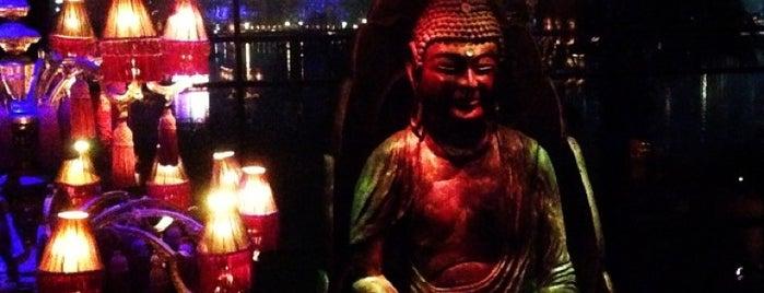 The Bar is one of Buddha-Bar.