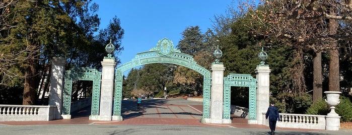 Sather Gate is one of David 님이 좋아한 장소.