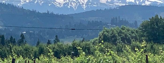 Mt. Hood Winery is one of Orte, die Rachel gefallen.