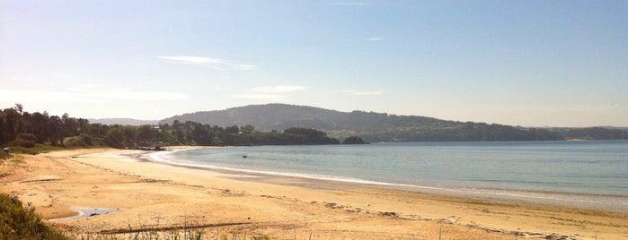 Praia de Seselle is one of Playas de España: Galicia.