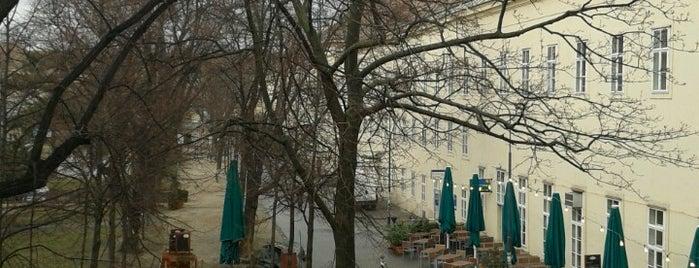 Sprachenzentrum der Universität Wien is one of Lieux qui ont plu à Paris.