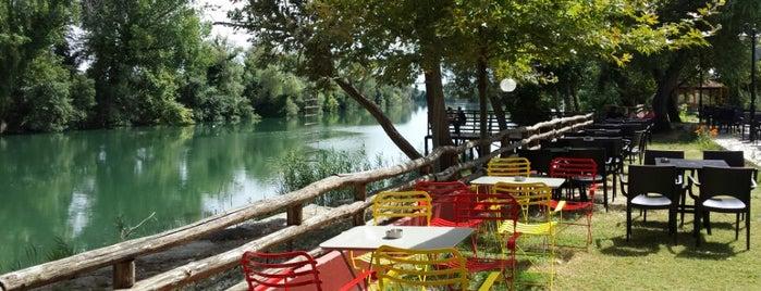 Παραποτάμιο Πάρκο is one of Amazing Epirus.
